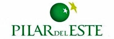 Logo Pilar del Este